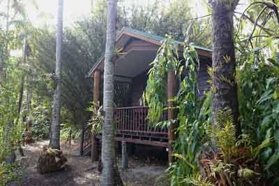 kewarra beach resort cairns fnq