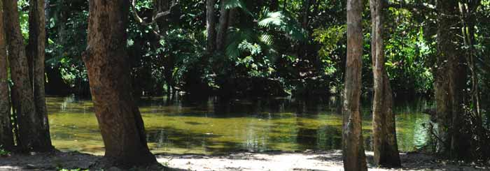 Port Douglas Swimming Holes