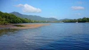 daintree river crocodiles