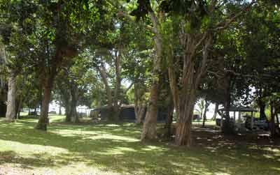 bramston beach campground