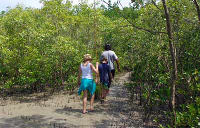 aboriginal tours