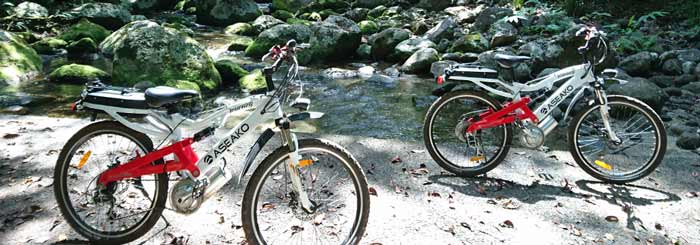 Ebike Tours: Exploring the Rainforest on Two Wheels