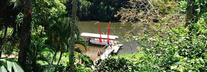 Authentic Kuranda: Riverboat Cruise and Rainforest Tour