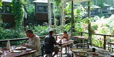 daintree restaurant