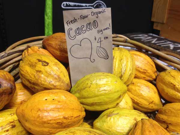 picture of cacao