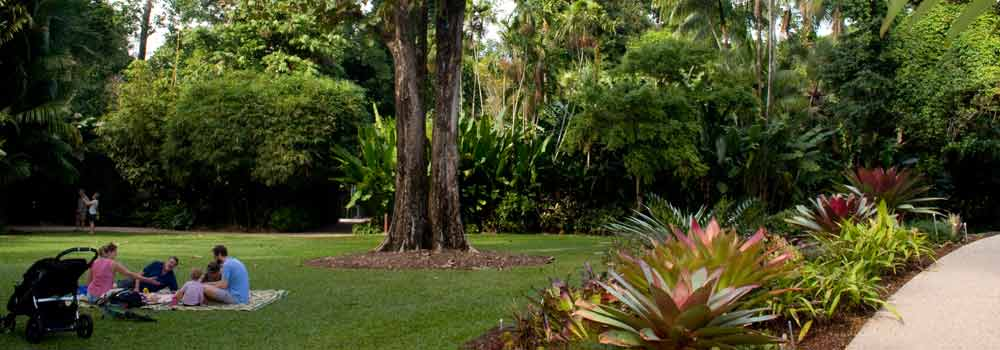 Cairns Parks and Gardens: Picnic in the City