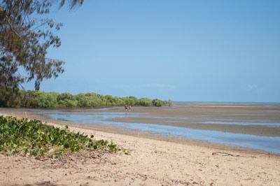bushland beach townsville beaches