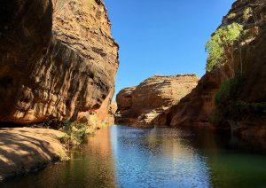cobbold gorge boat ride