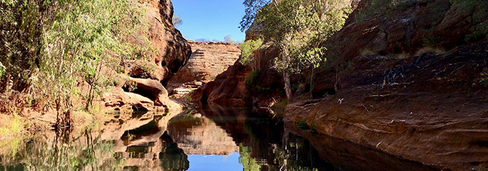 Cobbold Gorge: Gorgeous Outback Oasis
