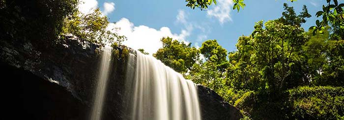 Things to do in the Atherton Tablelands
